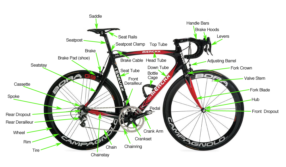 road bike mountain bike bmx biking cycling and bicycling news rh lookingforadventure com Mountain Bicycle Parts Diagram detailed diagram of bicycle parts