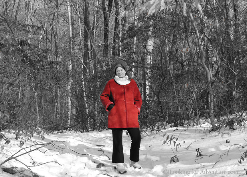 Winter Snow Scene Photo In Devils Den Nature Preserve In Weston - Black and white photography with color accents